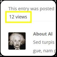 Как показать количество просмотров записей на WordPress сайте