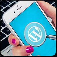 Шесть альтернатив стандартной поисковой строке на WordPress