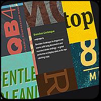 Кастомные шрифты для WordPress: плагины и сервисы